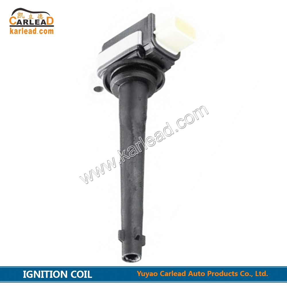 0221504030, 8200699627, DQG133F, Ignition Coil